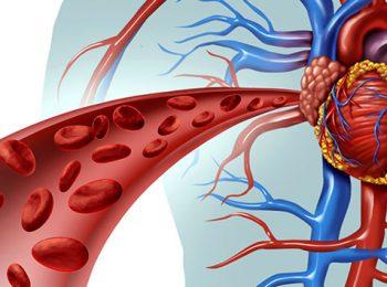 agendamento cardiologia Cardiologista em Fortaleza e Maracanaú | ICCardio cirurgia vascular